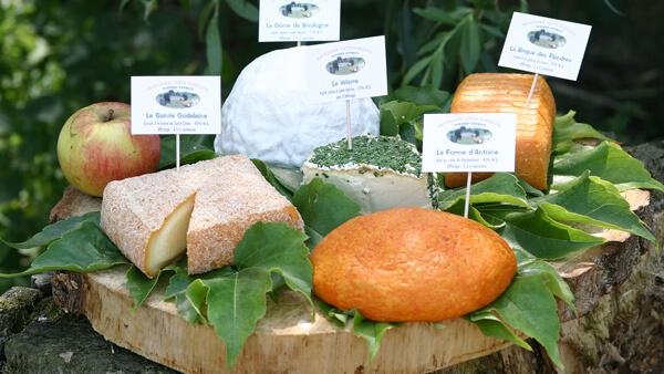 Plateau de fromage du nord de la France