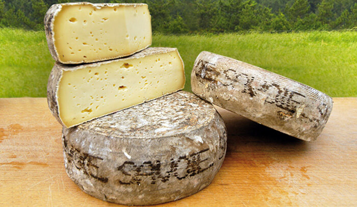 Différence entre fromage tomme et tome