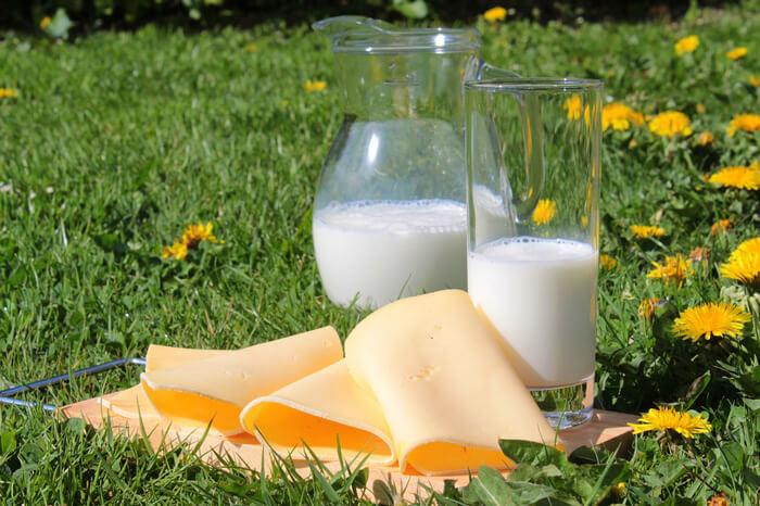 Production de lait Fromage
