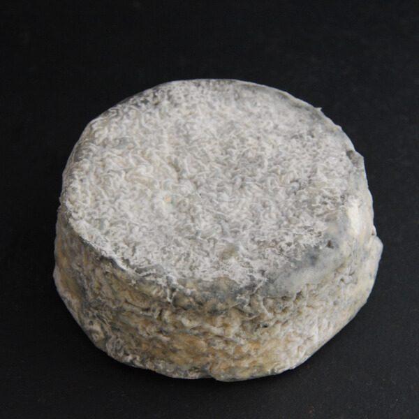 Le Selles−sur−Cher : fromage au lait cru de chèvre