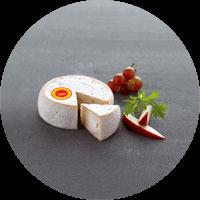 Fromage de chèvre CHEVROTIN AOP