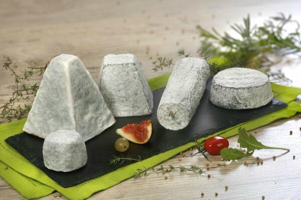 Toutes les formes de fromage de chèvre