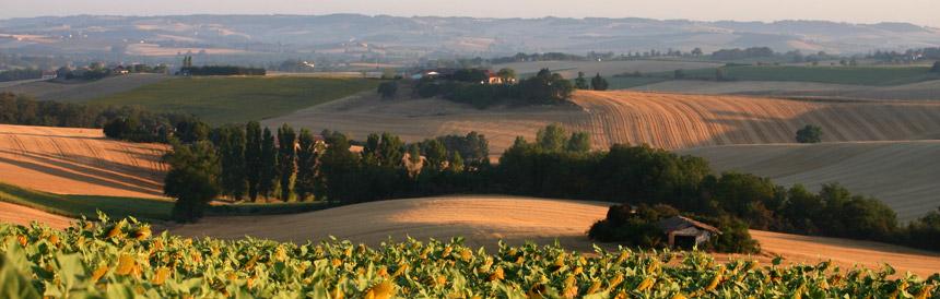 Interview de Philippe SIEBERT : Vigneron du Domaine du Have