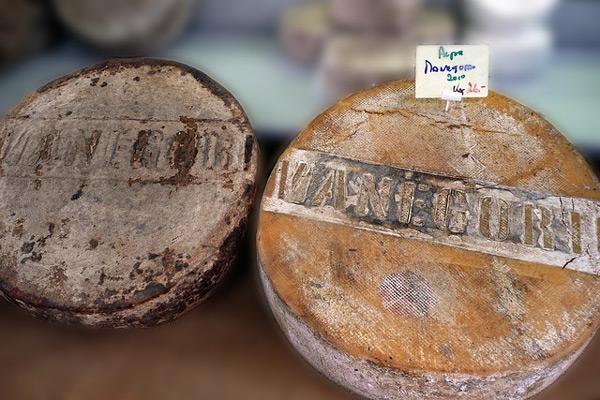 Le plus vieux fromage