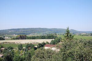 Les vins de la Provence